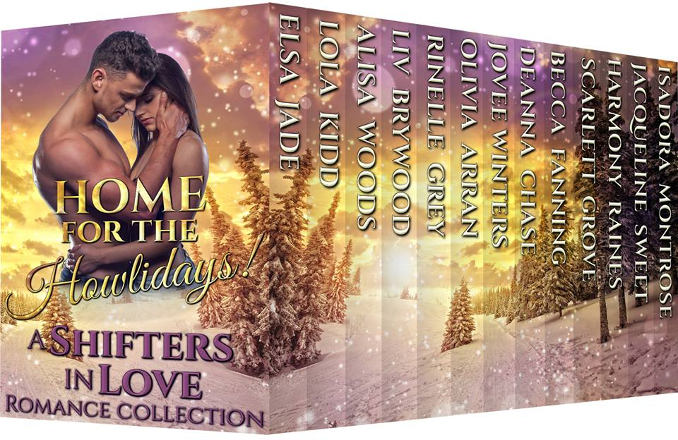 A New Dragon Returns Story is Available in the Home for the Howlidays Box Set!